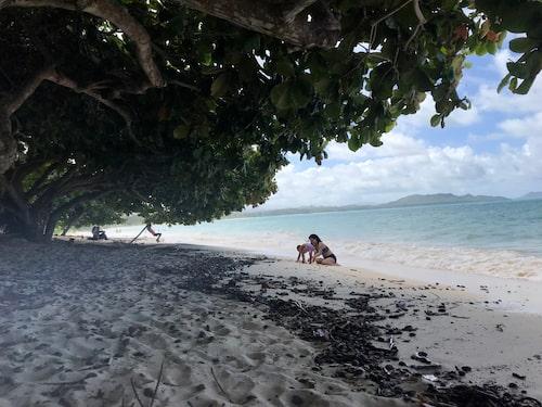 Lanakai Beach där både Barack Obama och Elvis Presley har haft sommarstuga.