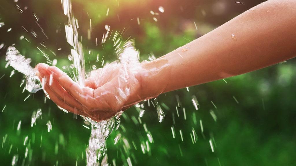 Det finns flera saker att tänka på under perioder av torka för att minimera skaderisken.