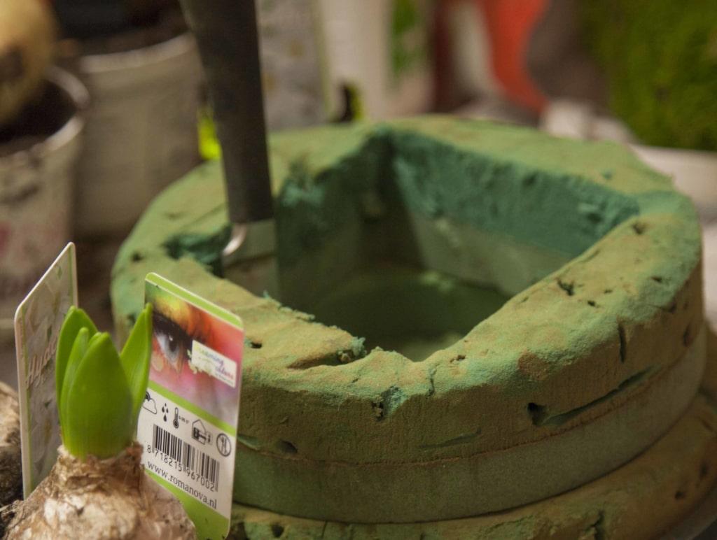 Skär ut en fyrkant där hyacinterna ska få plats...