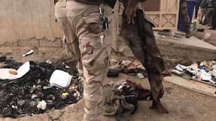 Bilder har finner irakiska styrkor is hemlighet