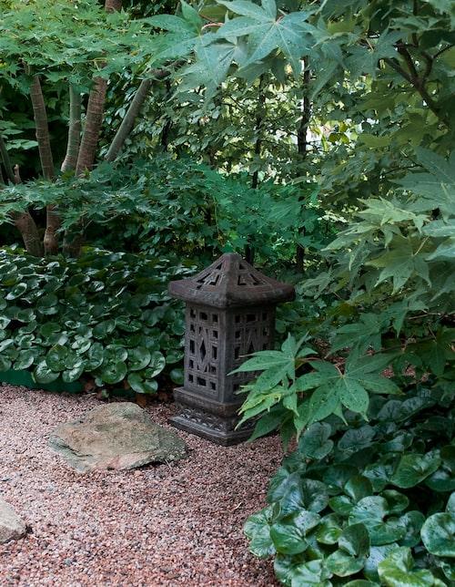 Inne i Andreas trädgård symboliserar gruset ett hav och eftersom man inte kan gå på havet behövs det trampstenar. De japanska lönnarna har underbara färger på hösten och på våren blommar det vitblommande körsbärsträdet.