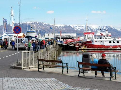 Vackra Reykjavik är en spännande huvudstad.