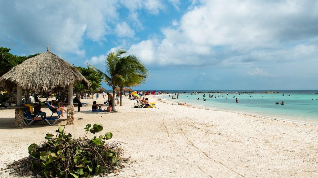 Strandlivet på Aruba är njutbart och det är nära till skuggan under palmbladen.
