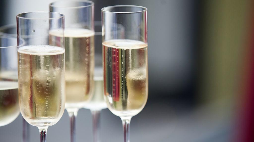 Allt om vins expert tipsar om mousserande viner som matchar maten