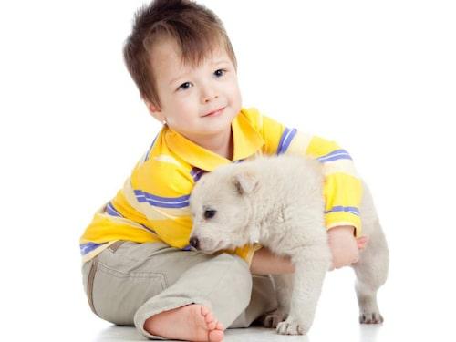 Barn och djur är en bra kombination!