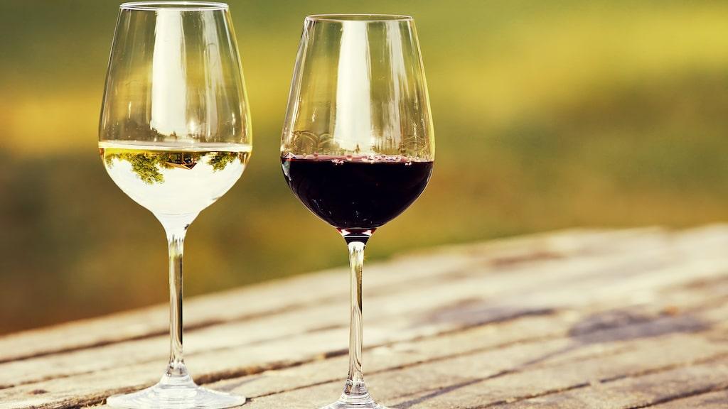 Det kan vara värt att testa hemma. Ett roligt och intressant experiment, menar vinexpert Andreas Grube.