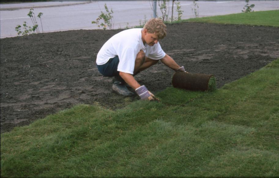 """STEG 5 Börja längst en kant.<br>Börja lägga längst en kant, och där du sedan kan jobba dig utåt. Det vill säga samma teknik som när man målar golv, du ska inte """"måla"""" in dig.<br>Ju mindre man går på den utlagda gräsmattan desto bättre. Det är lätt att hantera gräsrullarna, lägg rullen på """"startplatsen"""" och rulla ut. Skulle de komma lite snett är det enkelt att skjuta dem på plats. Nu känner man verkligen att det är en matta man lägger, som en vanlig inomhusmatta man lägger på plats."""