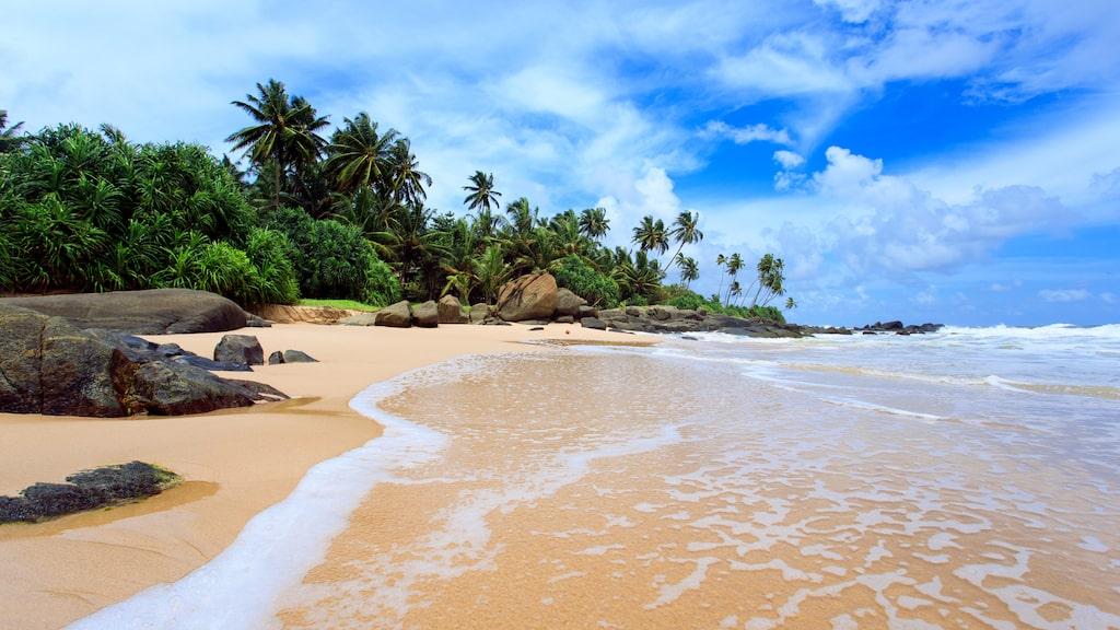 Nu vill Sri Lanka locka tillbaka turister till landet med hjälp av gratis visum.