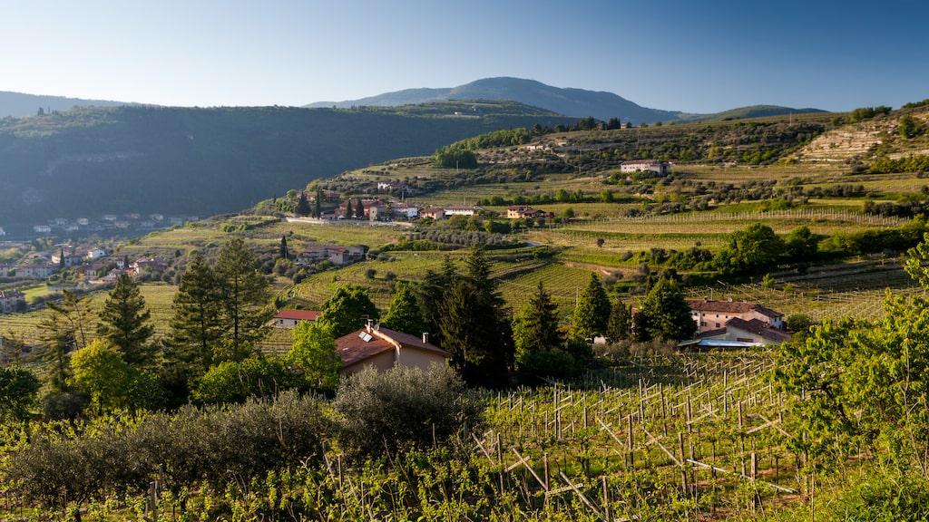 Veneto i norra Italien.