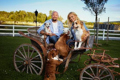 Djurintresset förenar. Här är Anders och Johanna med sina hundar: Iris och Sonja, engelska bulldoggen Karin och jack russell-syskonen Ebba och Selma.