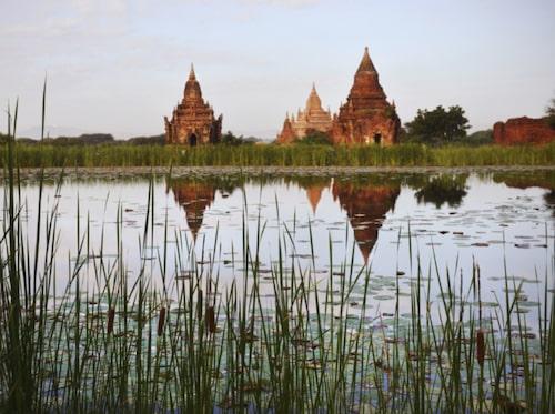 Flodkryssa från Bagan.