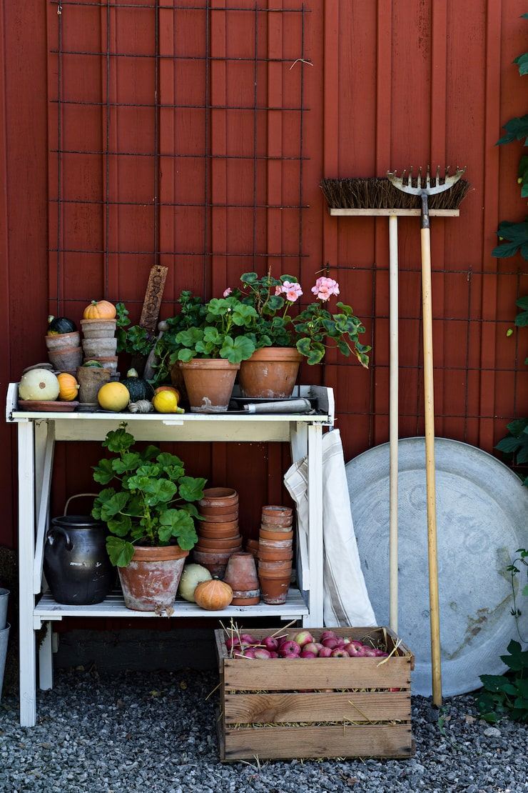Vid planteringsbordet från Plantagen är det ständigt nya projekt på gång. Plantor ska skolas om och nya arrangemang skapas.