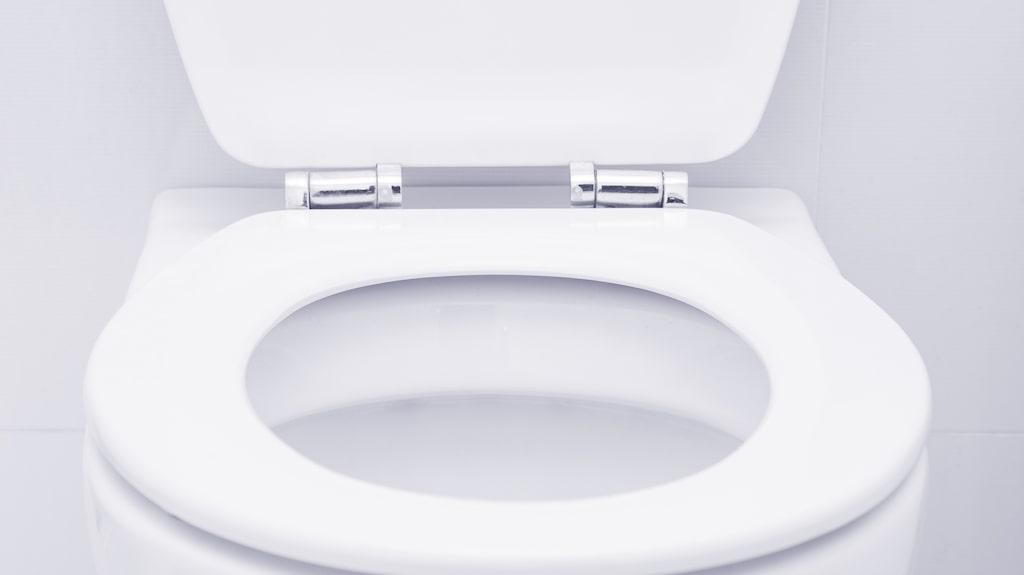 Det finns betydligt snuskigare saker i ditt hem än toalettringen
