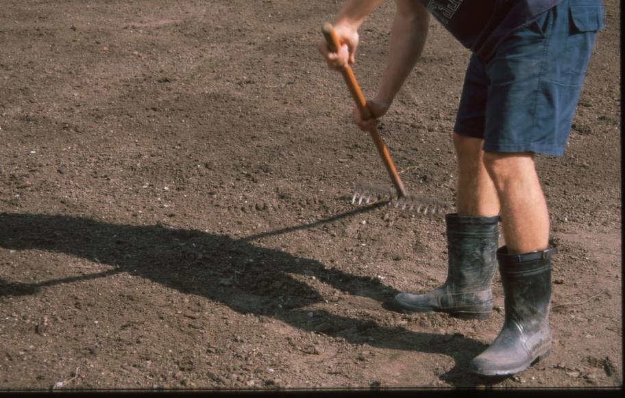 STEG 2. Kratta ut ojämnheter - jordlagret ska vara perfekt.<br>Eventuella ojämnheter ska bort. 15 centimeter av det översta jordlagret ska helt enkelt vara perfekt. Ju bättre kontakt med underlaget som mattan får, desto snabbare etablerar den sig.<br>Jorden ska vara sandblandad, särskild gräsmattejord finns att köpa men även vanlig, ogräsfri plantjord fungerar bra. Gräsmattejord säljs dels i storsäck, dels på flak per ton.<br>Har du lerjord ska den förbättras med åtta millimeter grov sand. För fin sand och din lerjord kommer istället att bli ännu hårdare.<br>Sandjord kan förbättras med torv. Välj då torv som inte behöver vattnas innan den grävs ner.<br>Det översta lagret ska bestå av 5-10 centimeter bra jord. Den ska inte vara nygödslad, och ingen gödsel få heller ligga på ytan. Då kommer gräsmattan att brännas.