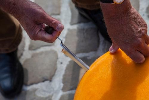 Med hjälp av ett specialverktyg kan man få ut en bit av ostens kärna för att kontrollera smak och doft.