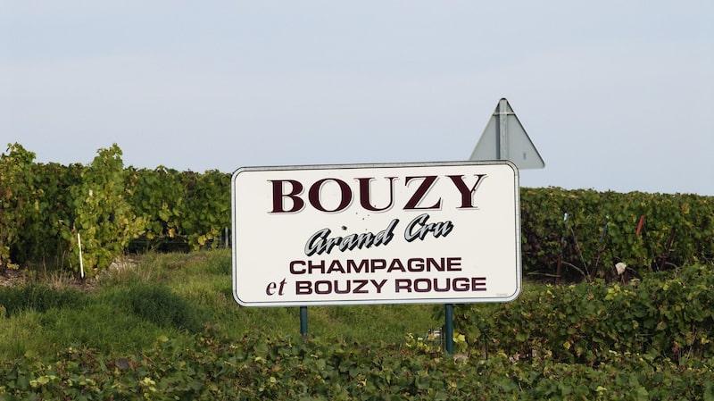 Vinälskare över hela världen reser gärna till Champagne.