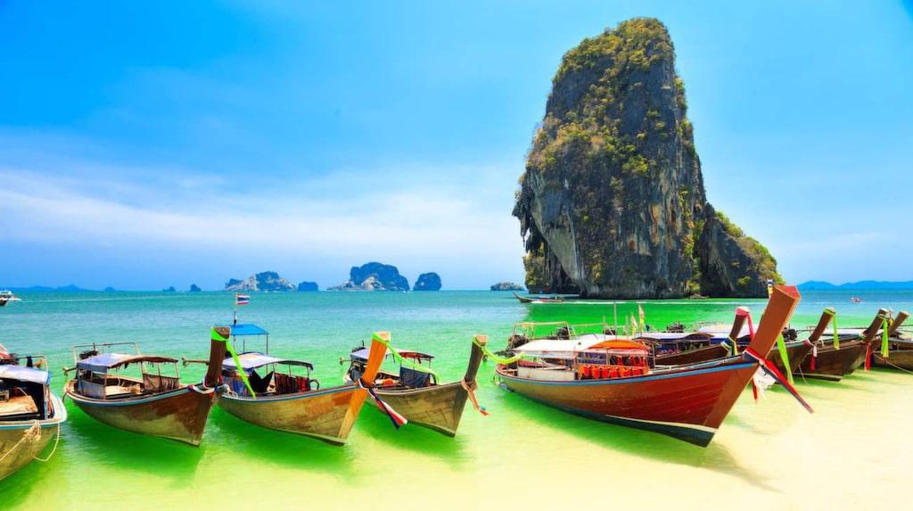 <p>Visste du att Thailand har både världens största sötvattenfisk – och minsta däggdjur?<br></p>