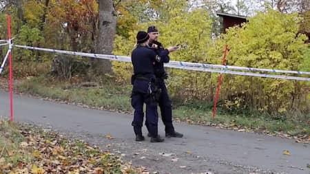 Svensk artist jagas för gårdsmord
