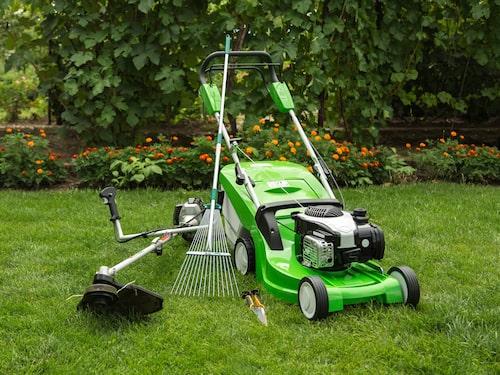 Den bästa kombinationen i en trädgård med gräsmatta och planteringar är att ha både en gräsklippare och en grästrimmer. Och en kratta är också bra att ha.
