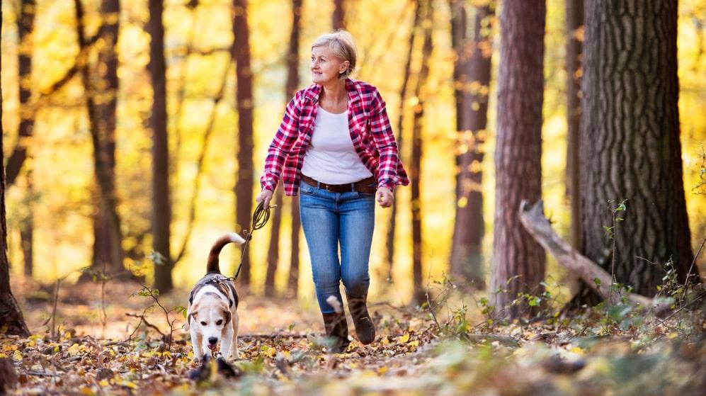 Ett bra sätt att komma ut på promenader är att skaffa, eller låna någon annans, hund.