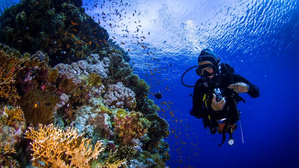 Ska kameran med ner när du dyker så är det bra att prioritera vilket vattendjup den klarar av.