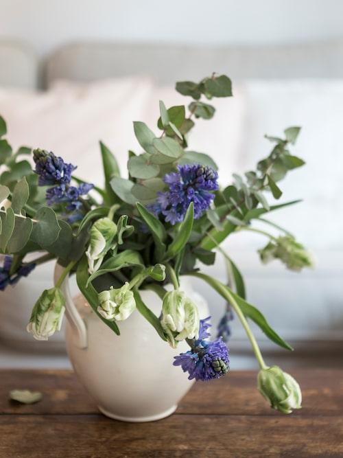 Kanna i vitt porslin och en bukett med spretande papegojtulpaner, blå hyacinter och eukalyptus. Blommorna sprider en härlig doft i rummet.
