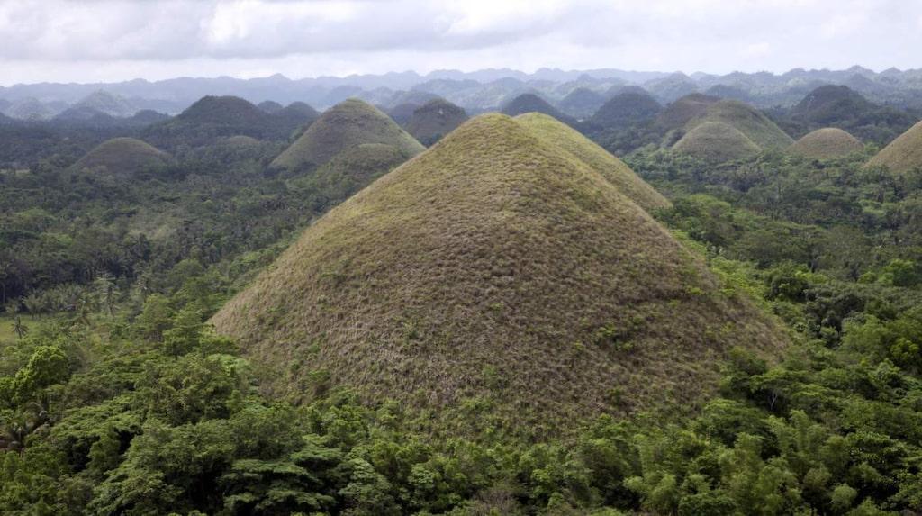 De säregna gräsklädda kullarna är mellan 30 och 100 meter höga och på sommaren när växtligheten blir brunbränd av solen ser de verkligen ut som runda chokladpraliner.