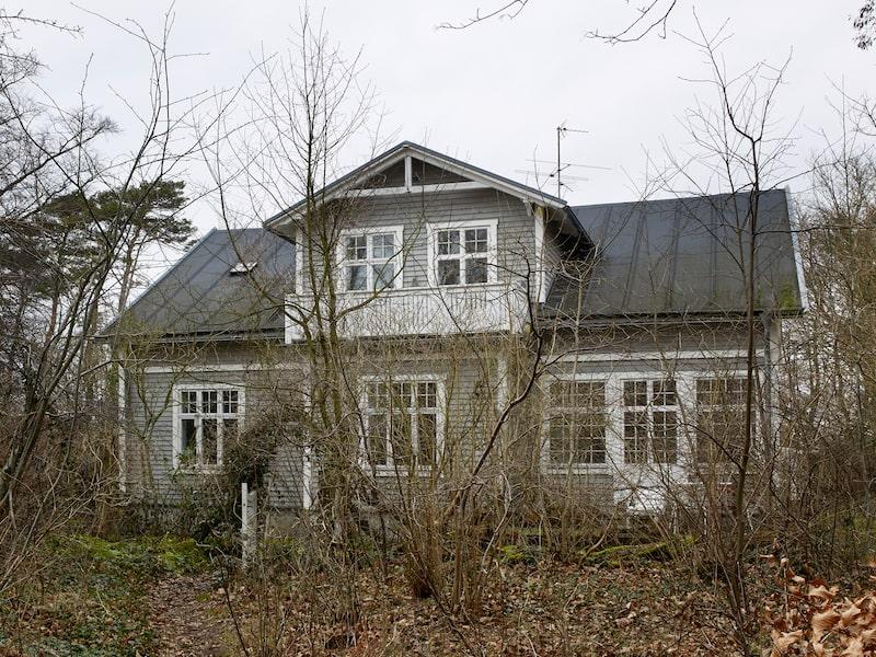 Familjens hus i Falsterbo ligger inbäddat i växtligheten. Madeleine och David älskar vilda trädgårdar där växterna gärna får slingra sig runt huset.