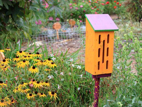 Bygg en fjärilsholk och låt fjärilarna övervintra på tomten.
