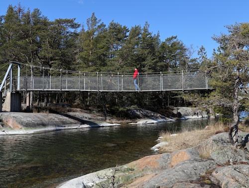 En av många hängbroar i Stendörrens naturreservat.