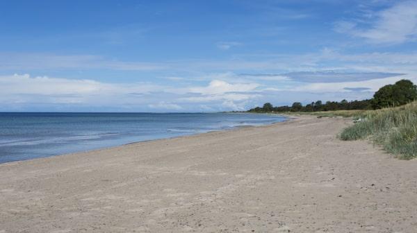 Tofta är en av Gotlands mest kända stränder.