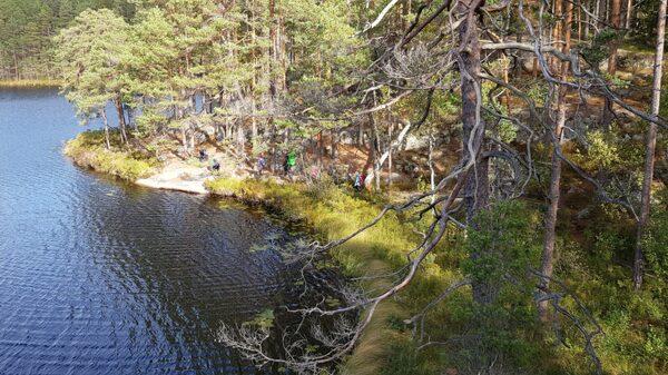 Tiveden är lättvandrad med många badmöjligheter.