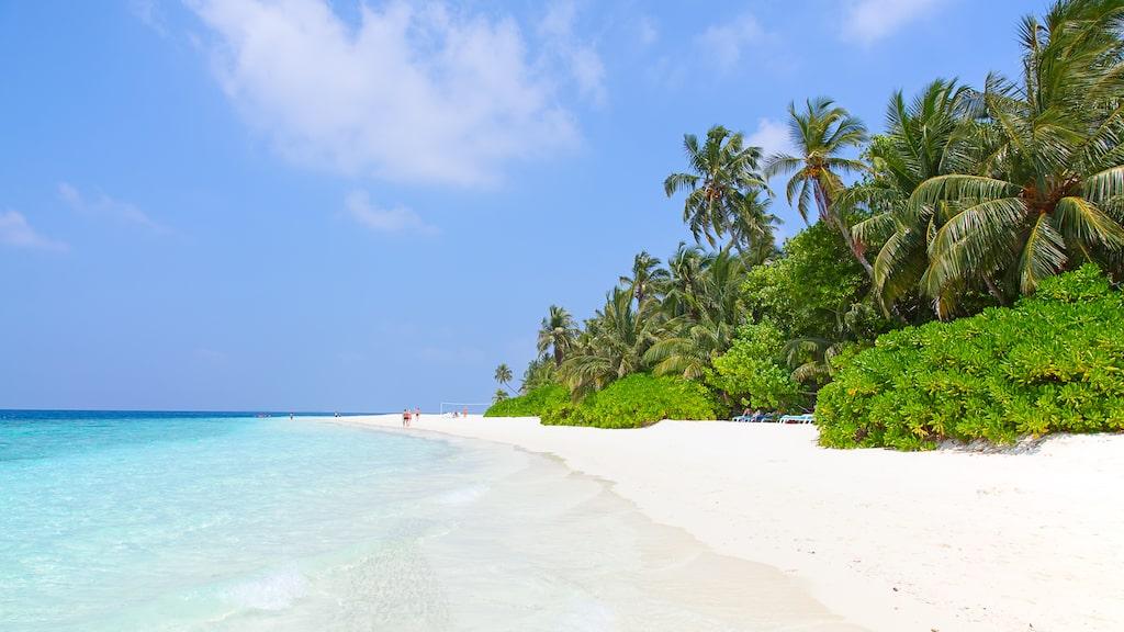 """Hotellet """"Conrad Maldives Rangali Island"""" ligger på paradisön Maldiverna."""