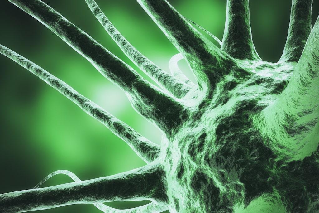 Hemmet kryllar av otäcka bakterier som kan göra dig sjuk.