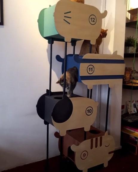 Katter gillar ju som bekant att klättra, och krypa in i trånga vrår och gömma sig. Här kan de göra både och.