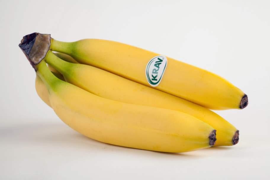 <strong>4 BANANER.</strong><p>En   frukt som är hårt  besprutad med  miljöfarliga bekämpningsmedel som   även kan ge dem  som arbetar på  plantagen, och deras barn,  nervskador.</p>