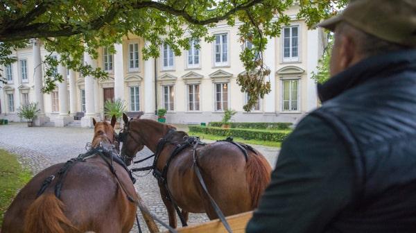 Gmina Bielawy har slott, hästar och fin natur.