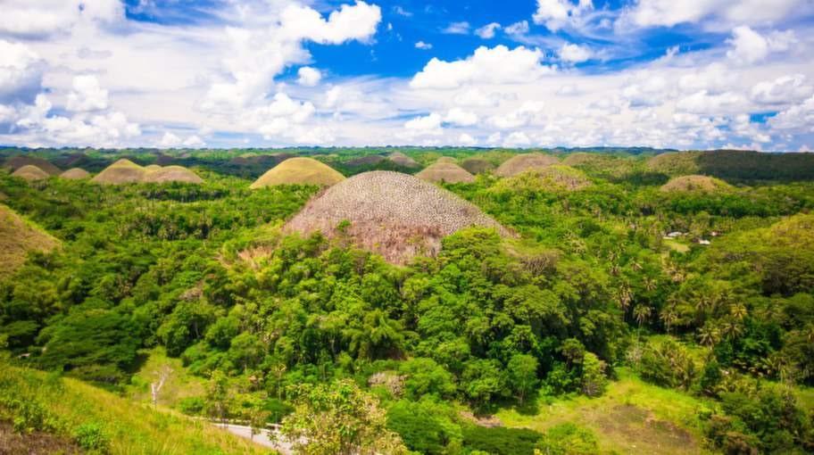Nästan tvåtusen runda kullar ligger utslängda likt chokladpraliner i det tropiska landskapet på Bohol i Filippinerna.