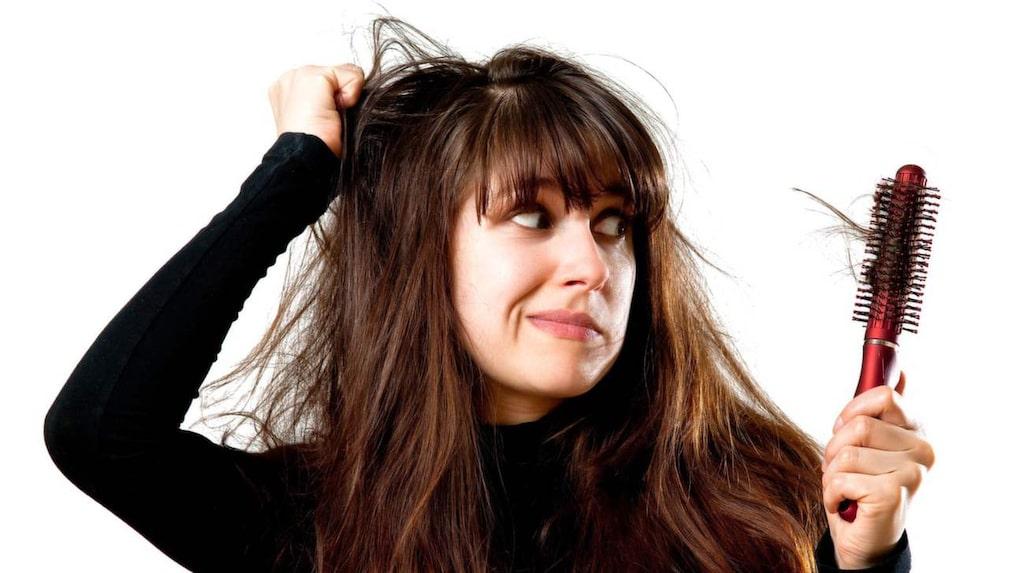 <p>Tröttnat på kluvna toppar?  Så ofta bör du trimma håret för att slippa!</p>