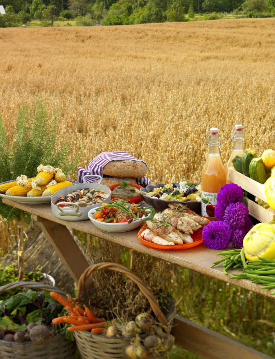 Intresset för att leva och äta ekologiskt har äkat de senaste åren. I den ekologiska odlingen används inga kemiska bekämpningsmedel eller något konstgödsel.