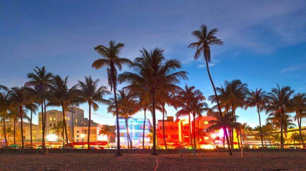 Minst 14 personer i Miami, Florida, har smittats av zikaviruset.