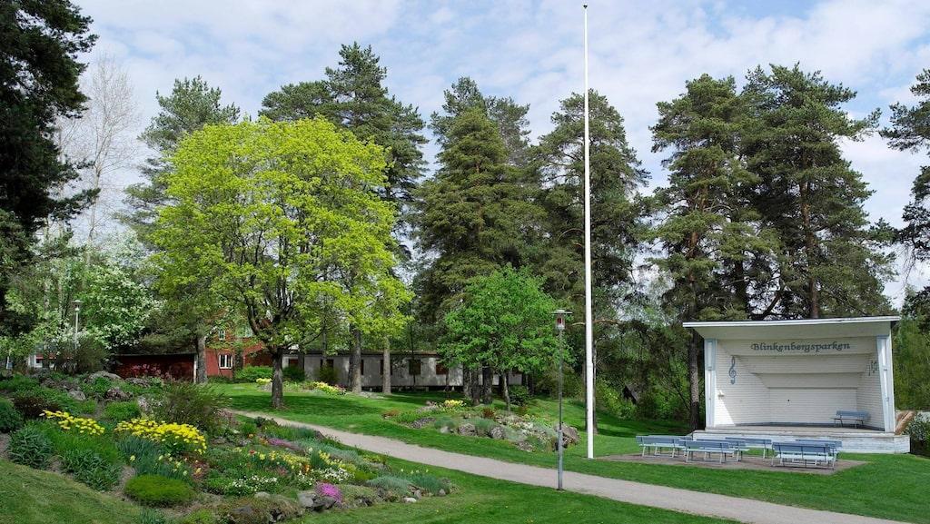 Förra veckan siktades en enorm träpenis i Blinkenbergsparken i Hagfors i Värmland. Under onsdagen visade sig ännu ett erotiskt konstverk, fast längs Dalavägen.