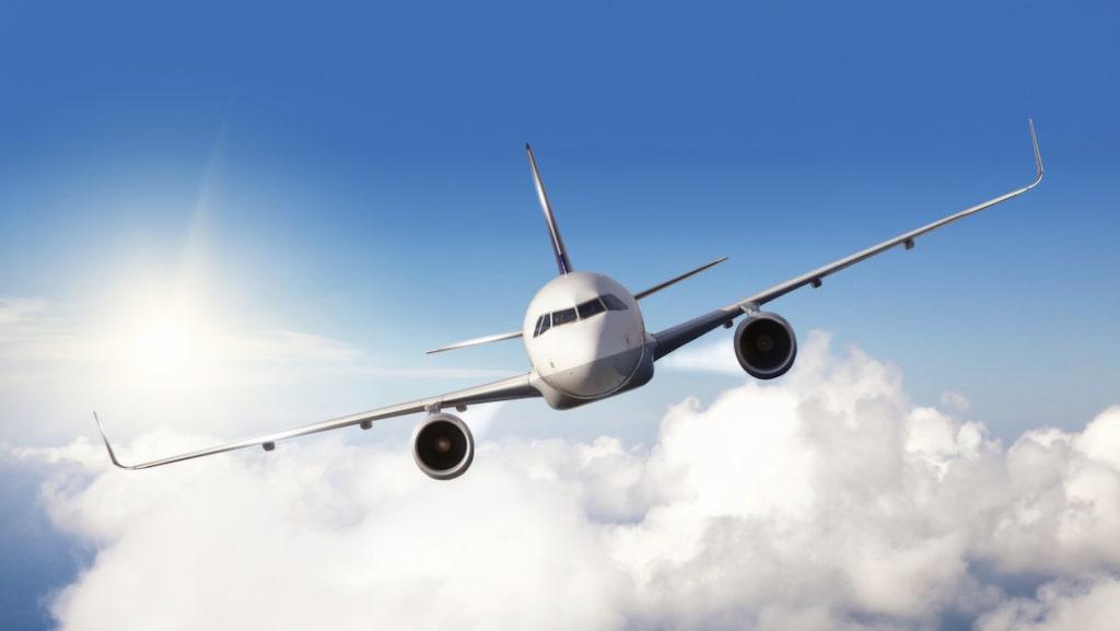 <p>Genom att studera fåglars rörelsemönster hoppas forskare kunna förbättra flygsäkerheten.</p>