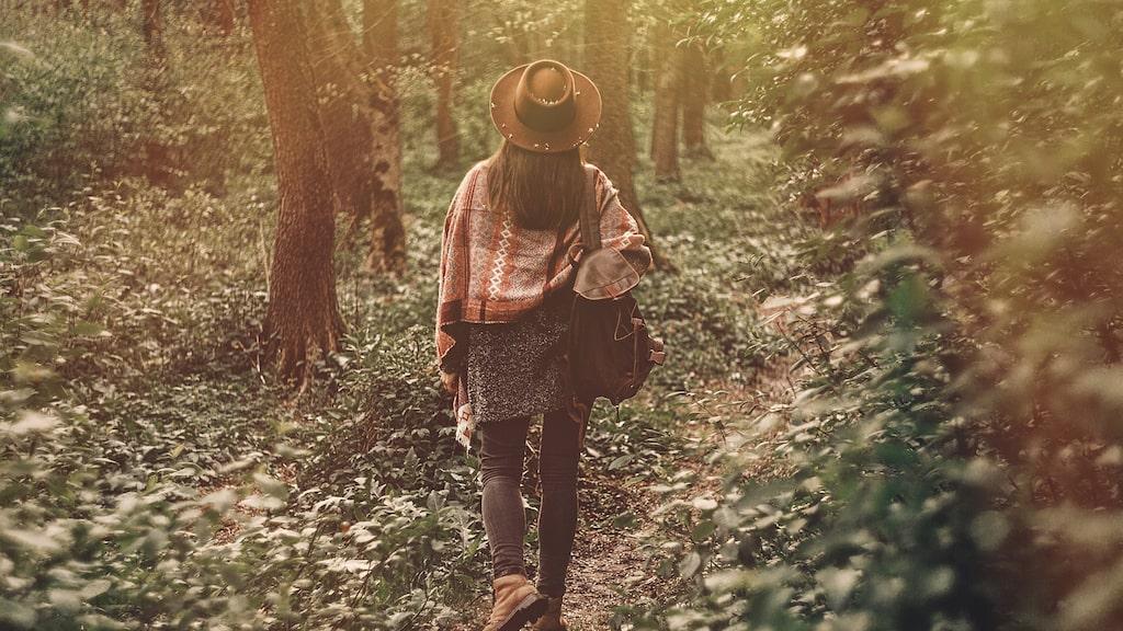 När det stormade som värst hittade hon ett gammalt träd som blev hennes trygga punkt.