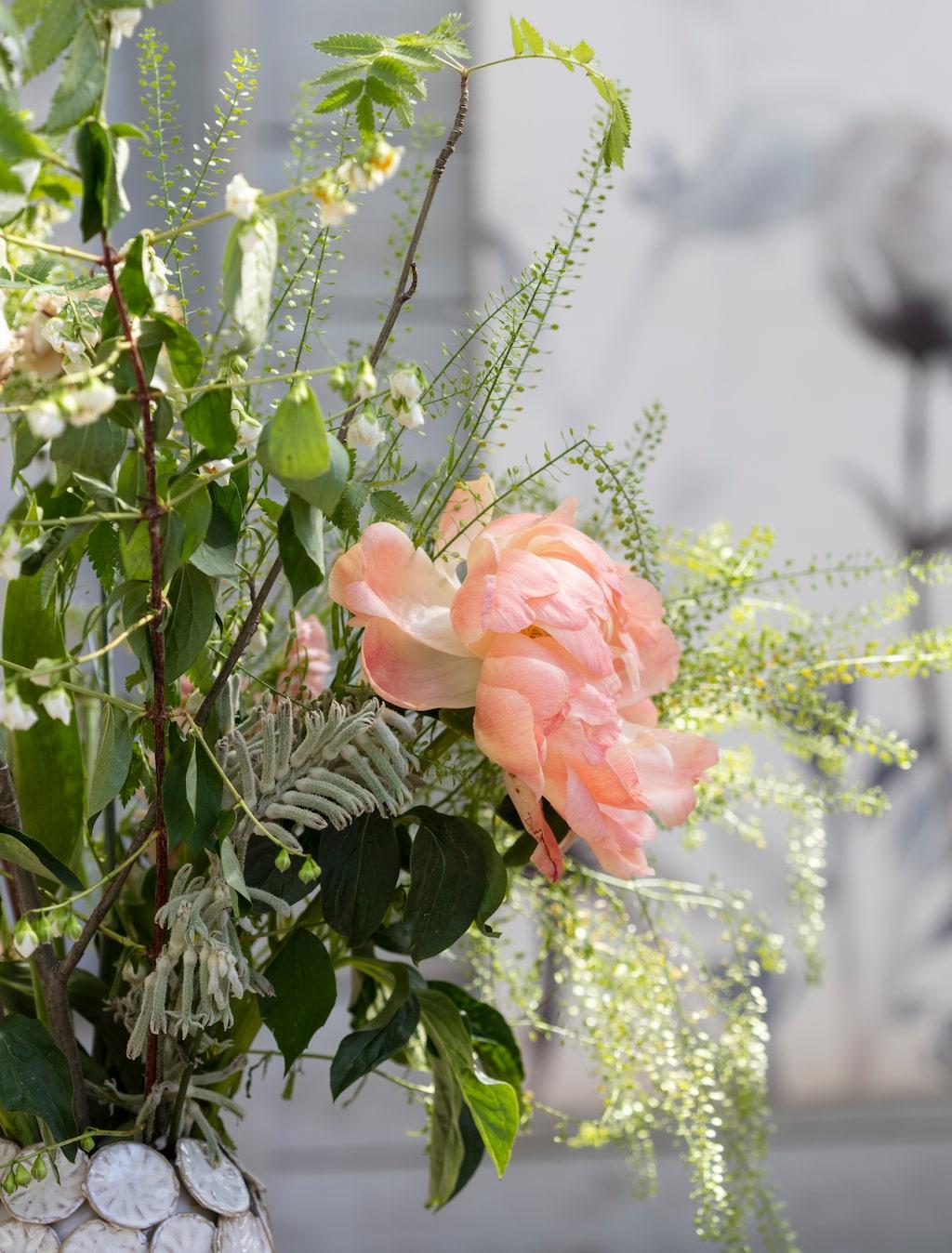 Matcha färgskalan med blomstrande krukväxter och snittblommor.