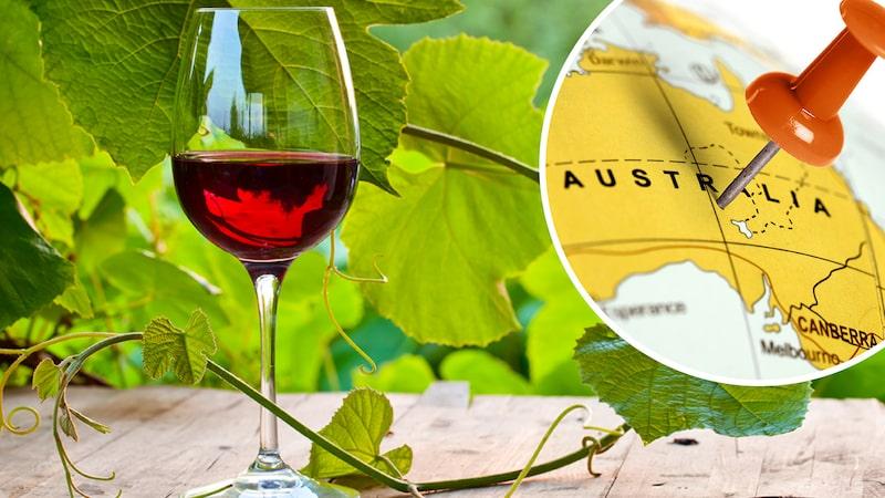 Australien är bland annat känt för sina shirazviner. Här tre fyndstämplade viner enligt Allt om Vins provningsgrupp.