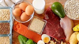äta mycket protein