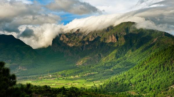 La Palma är känt för sitt gröna landskap.