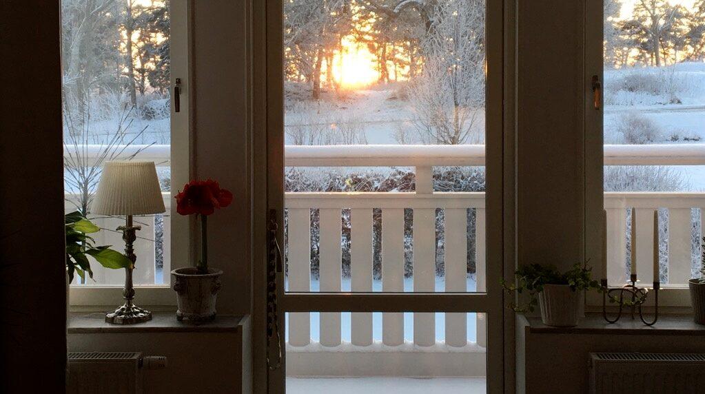 Utsikt över godsets park. Utsikten från vardagsrummet på Säbyholm.