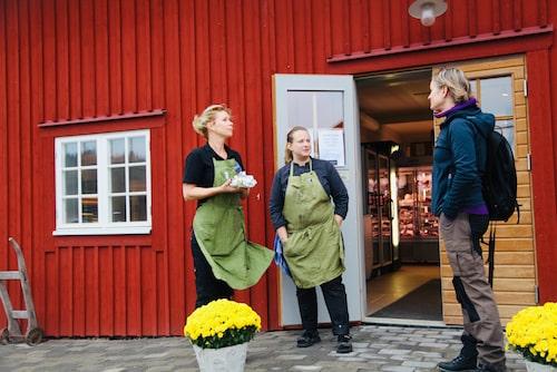 Bergs Gård är en traditionell bondgård, men här finns också kafé, gårdsbutik och flera vackra boenden.